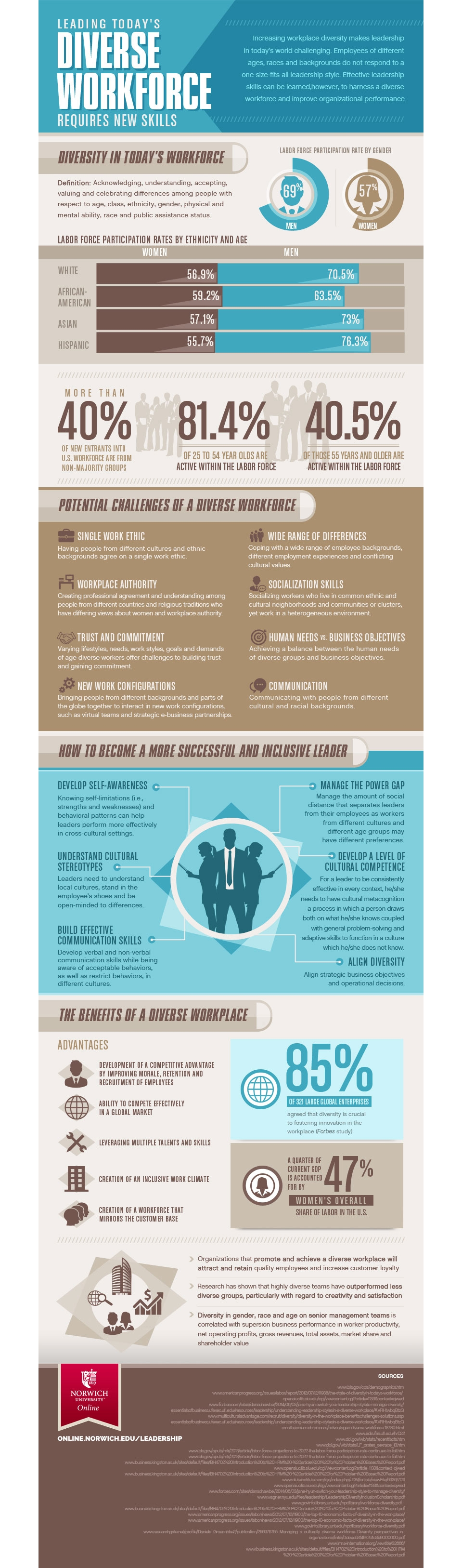 diverse workforce infographic image
